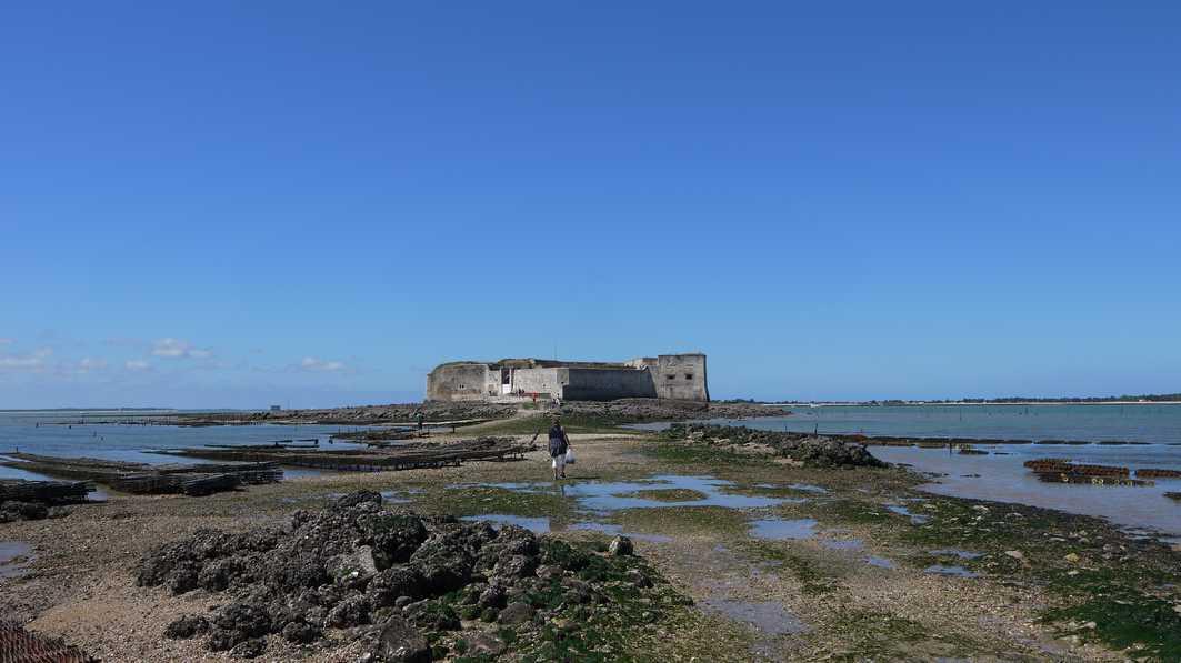 Jour 2 fouras fort enet et ile madame - Restaurant l huitre y est port des barques ...